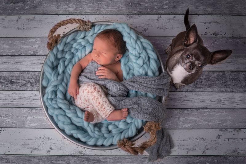 Baby in Schale; Newbornphotography